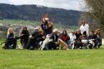Junghunde 26.04.2008