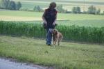 Oberhasli 24.06.2008